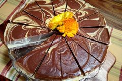 Deluxe-Apricot-and-Chocolate-Swirl-Cheesecake-(nut-free)6