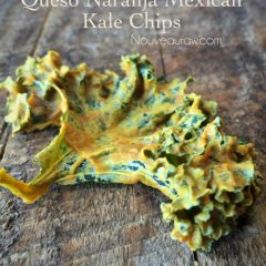 Raw-Queso-Naranja-Mexican-Kale-Chips1