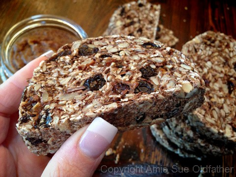 Raw Gluten-Free Seed Of Life Bread Slice