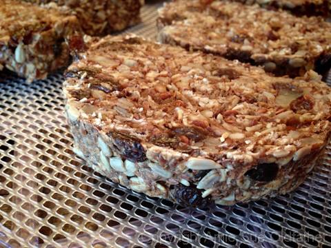 Raw Gluten-Free Seed Of Life Bread on a Dehydrator Tray