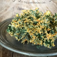 Raw-Spicy-Italian-Kale-Chips2