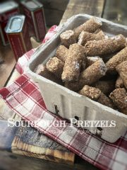 Sourdough Pretzels (raw, vegan, gluten-free, cultured)