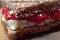 Peanut-butter-and-jelly-cracker101
