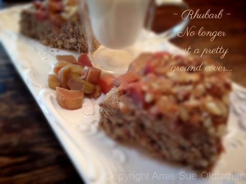 rhubarb-crmble-cake101