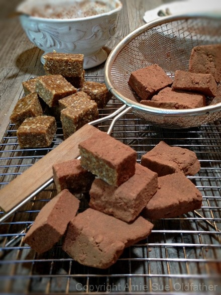 Raw Gluten-Free Chocolate Dusted Calimyrna Fig and Cardamom Brownie Bite