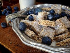 Shredded Coconut Biscuit Cereal (raw, vegan, gluten-free)