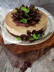 Psychedelic Grasshopper Cheesecake  (raw, vegan, gluten-free)