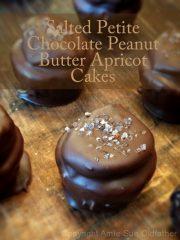 Salted Petite Chocolate Peanut Butter Apricot Cakes (raw, vegan, gluten-free)