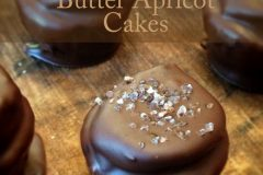 Salted-Petite-Chocolate-Peanut-Butter-Apricot-Cakes55