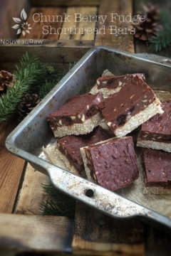 raw vegan gluten-free Chunk Berry Fudge Shortbread Bars displayed in a pan