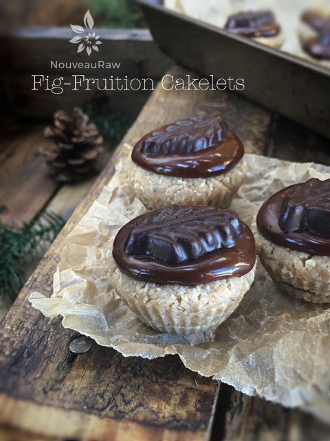 Fig-Fruition-Cakelets-feature