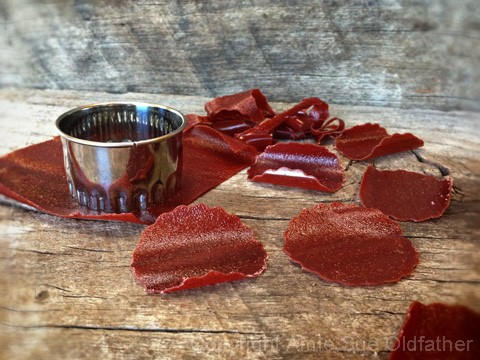 How-to-Make-Fruit-Leather-Flowers1