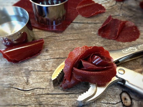 How-to-Make-Fruit-Leather-Flowers10