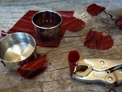 How-to-Make-Fruit-Leather-Flowers3