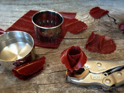 How-to-Make-Fruit-Leather-Flowers4