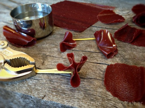 how to make fruit leather buddy fruits