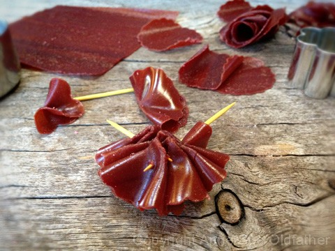 How-to-Make-Fruit-Leather-Flowerspompom3