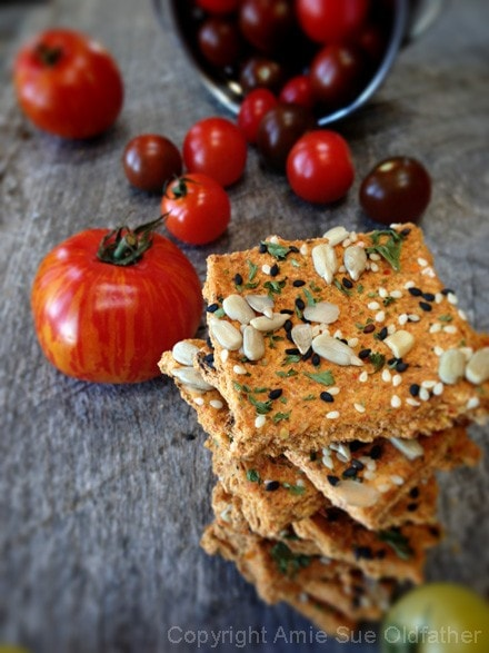 Pizza-Marinara-Crackers-11