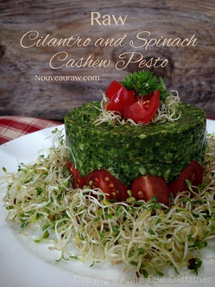 Raw-Cilantro-and-Spinach-Cashew-Pesto35
