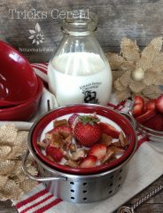 Tricks Cereal (raw, vegan, gluten-free)