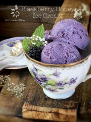 Blackberry Honey Ice Cream (raw, gluten-free)