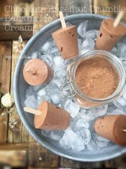 Chocolate Hazelnut Crumble Banana Ice Cream (raw, gluten-free)