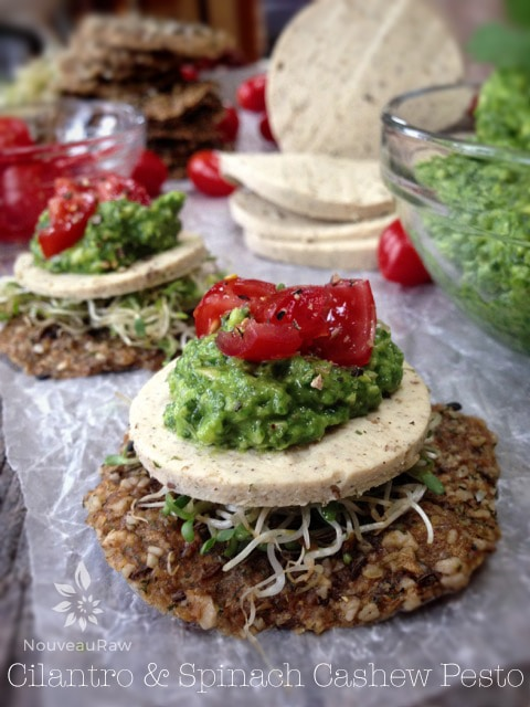 Raw-Cilantro-and-Spinach-Cashew-Pesto-feature