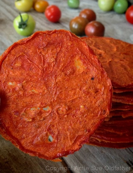 a close up of Smokin'-Tomato-Chips - gluten free, vegan, and raw