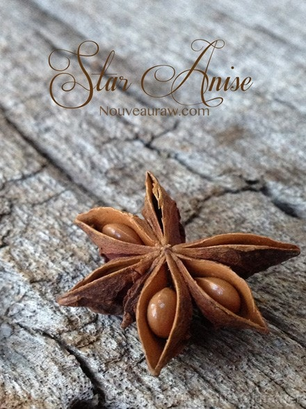 Raw Gluten-Free Cranberry Coconut Star Anise Bar