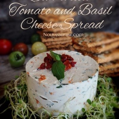 Raw, cultured, gluten free, vegan Cheese Spread with sun-dried tomato and basil