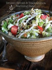 Brussel Sprout and Black Quinoa Warming Salad (raw, vegan, gluten-free)