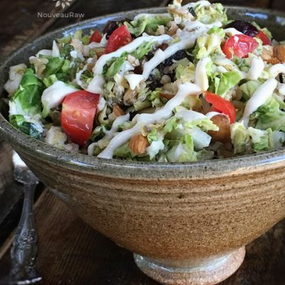 Brussel-Sprout-and-Black-Quinoa-Warming-Salad-feature