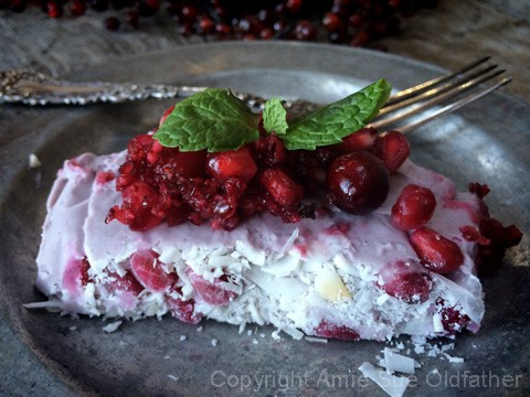 Raw-Pomegranate-and-Vanilla-Bean-Ice-Cream1