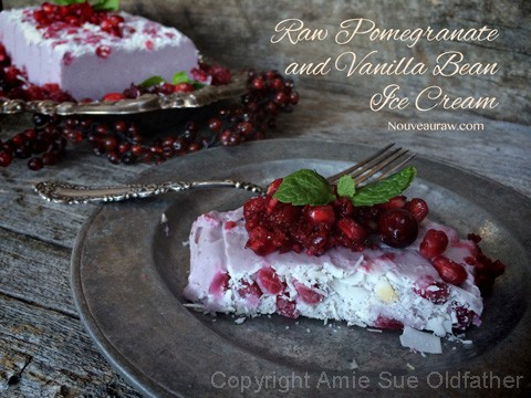 Raw-Pomegranate-and-Vanilla-Bean-Ice-Cream2