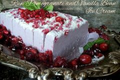 Raw-Pomegranate-and-Vanilla-Bean-Ice-Cream7