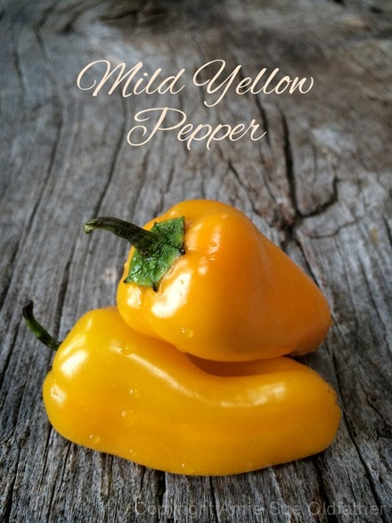 mild-yellow-pepper