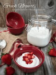 Greek Nogurt (raw, vegan, gluten-free, cultured)