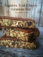 Nature's Trail Chewy Granola Bar (raw, vegan, gluten-free, nut-free)