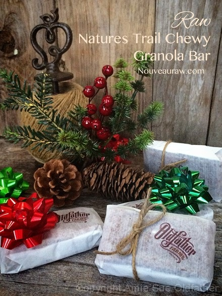 Natures-Trail-Chewy-Granola-Bar4