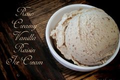 Raw-Creamy-Vanilla-Raisin-Ice-Cream11
