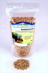 Hulled Buckwheat Groats- 1 Lbs – Organic Buck Wheat Groats- Sprouting Seed, Gardening, Planting, Edible Seeds, Emergency Food Storage, Hydroponics