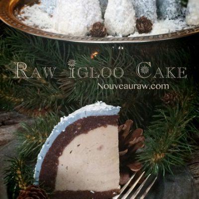 Raw-Igloo-Cake994