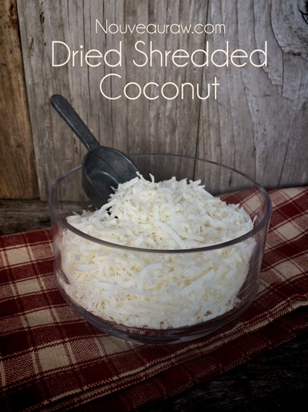 dried-shredded-coconut123