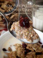 Almond Butter Cereal Crunch (raw, vegan, gluten-free)