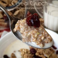 Raw, Vegan, Gluten-Free, and refined sugar-free Almond Butter Cereal Crunch