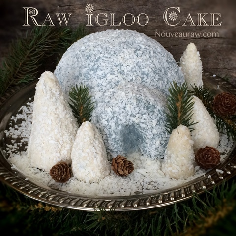 raw-igloo-cake123
