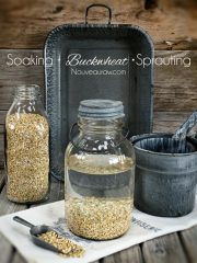 How to Sprout and Use Buckwheat Groats