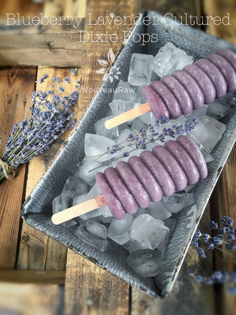 Blueberry-Lavender-Cultured-Dixie-Pops-featured