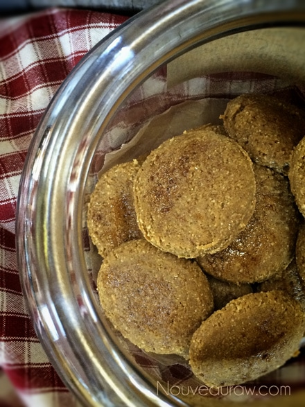 Raw-Soft-Brown-Sugar-Ginger-Cookie1