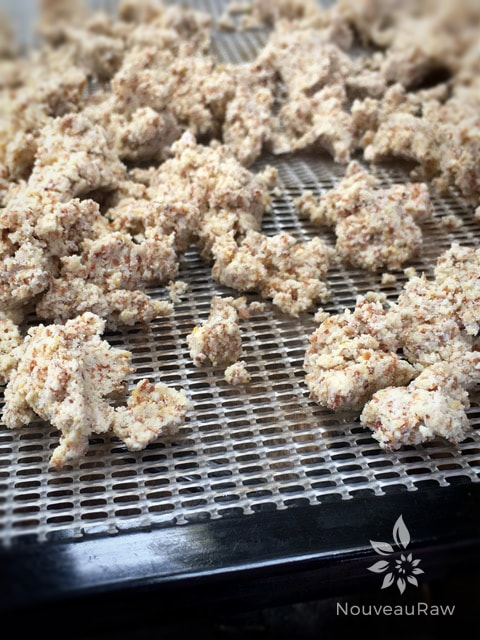 Wet almond pulp ready for the dehydrator.